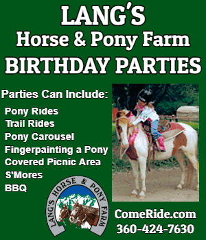 Langs Horse And Pony Farm Birthday Parties 2018